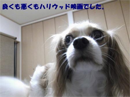 02_convert_20130805175628.jpg