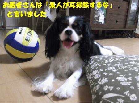 02_convert_20130823180746.jpg