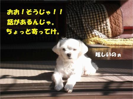 02_convert_20130828172438.jpg