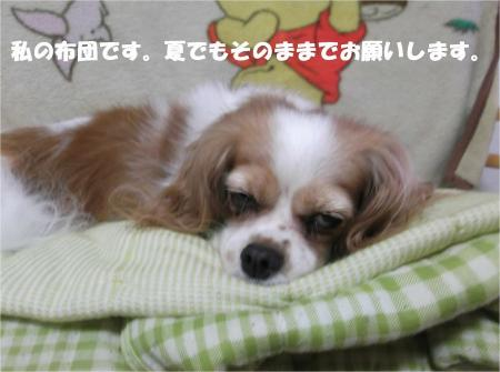 02_convert_20130829184002.jpg