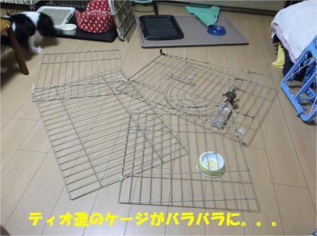 02_convert_20130903175136.jpg
