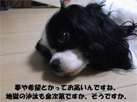 02_convert_20130904174557.jpg