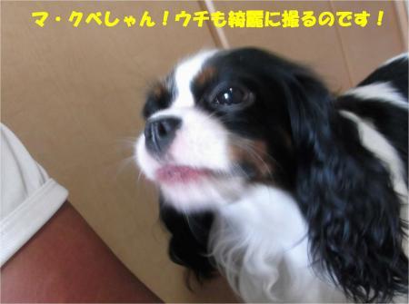 02_convert_20130910173501.jpg