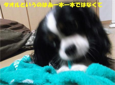 02_convert_20130911184535.jpg