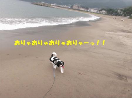 02_convert_20130917161002.jpg