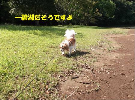 02_convert_20130923133316.jpg