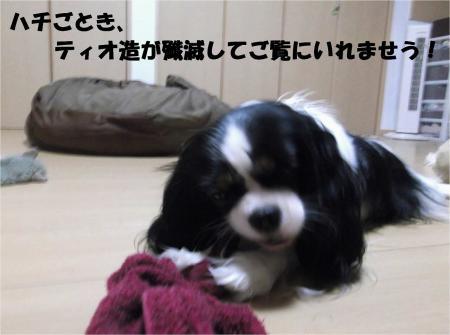 02_convert_20130926161100.jpg