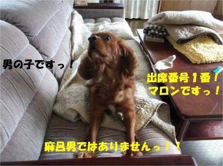 02_convert_20130927185412.jpg