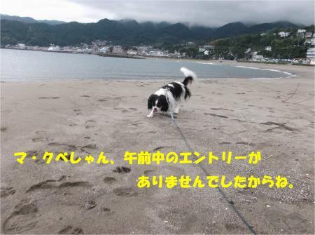 02_convert_20131007174052.jpg