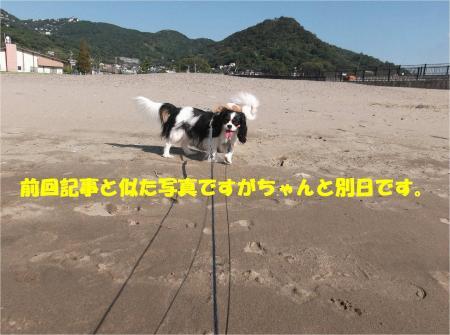 02_convert_20131015170738.jpg