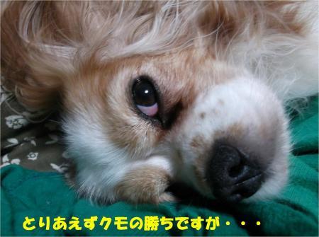 02_convert_20131016164951.jpg