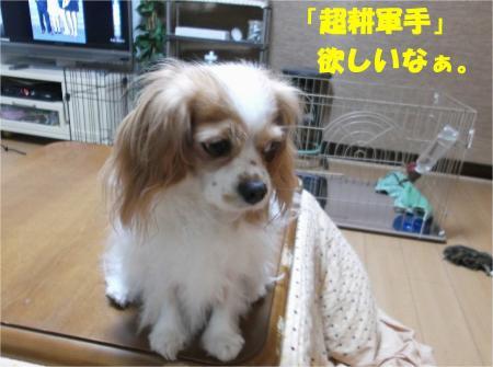 02_convert_20131024183335.jpg