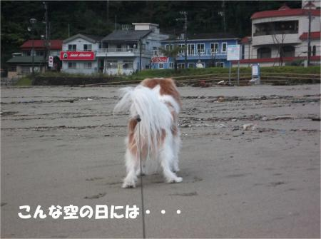 02_convert_20131028174200.jpg