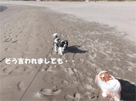 02_convert_20131202180916.jpg