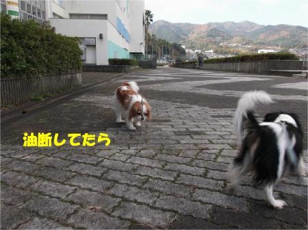 02_convert_20131209170541.jpg