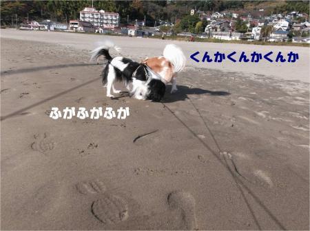 03-1_convert_20131202180927.jpg