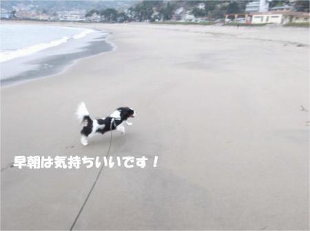 03-2_convert_20130401181606.jpg