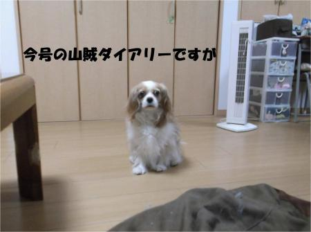 03-2_convert_20130627171357.jpg