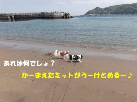 03_convert_20130415172720.jpg