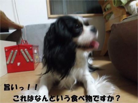 03_convert_20130515175706.jpg