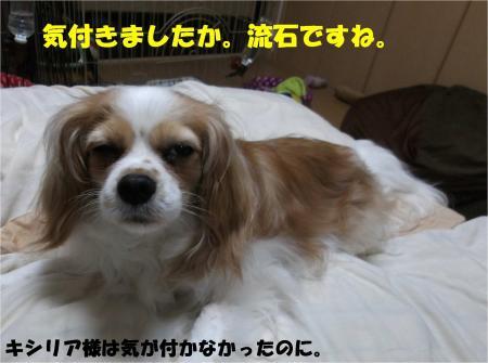 03_convert_20130516173227.jpg