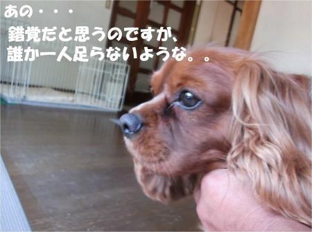 03_convert_20130604173321.jpg