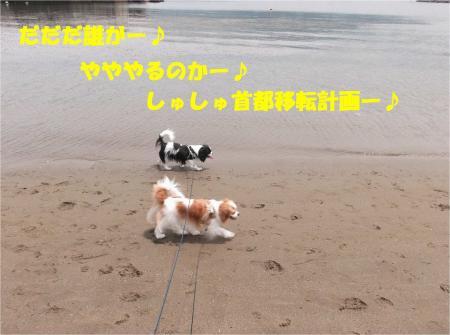 03_convert_20130610170155.jpg