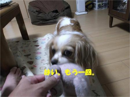 03_convert_20130611165418.jpg