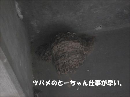03_convert_20130613170334.jpg