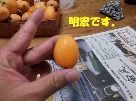 03_convert_20130619171114.jpg