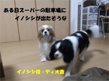 03_convert_20130627171409.jpg