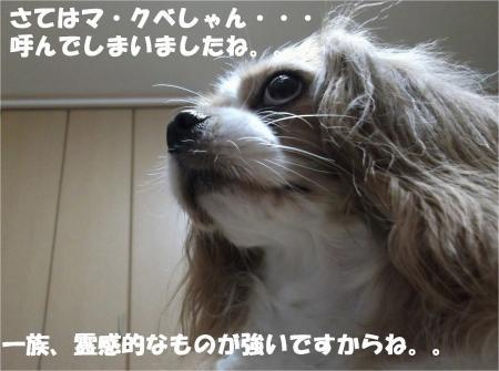 03_convert_20130725190754.jpg