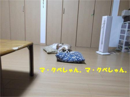 03_convert_20130731170854.jpg