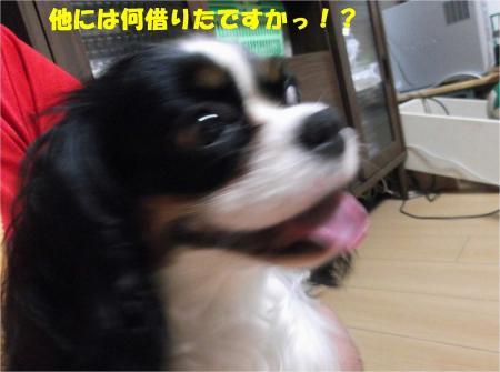 03_convert_20130802180013.jpg