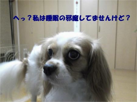 03_convert_20130805175641.jpg