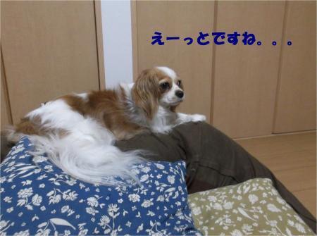 03_convert_20130806175730.jpg