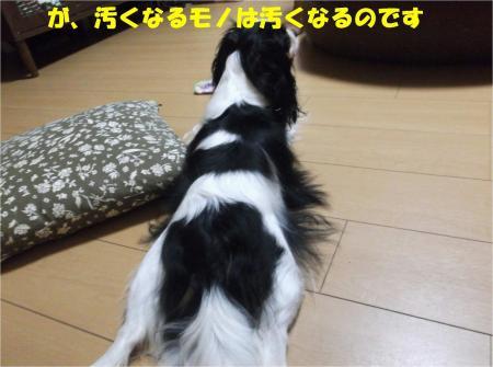 03_convert_20130823180758.jpg