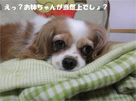 03_convert_20130829184013.jpg