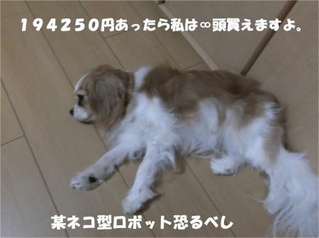 03_convert_20130904174608.jpg