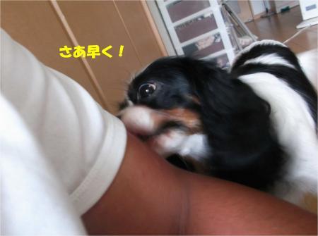 03_convert_20130910173614.jpg