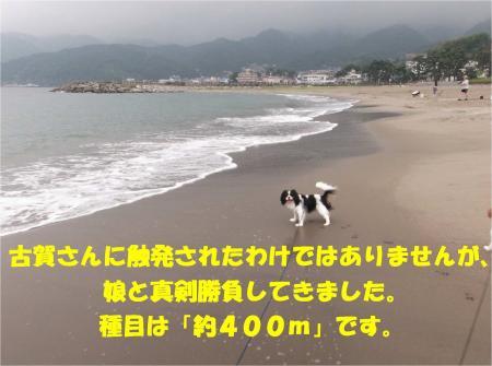 03_convert_20130917161013.jpg