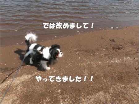 03_convert_20130923133327.jpg
