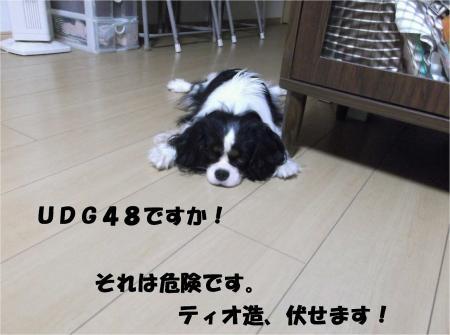 03_convert_20130926161111.jpg