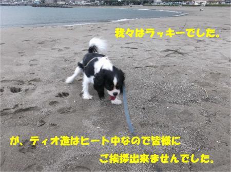 03_convert_20131007174104.jpg