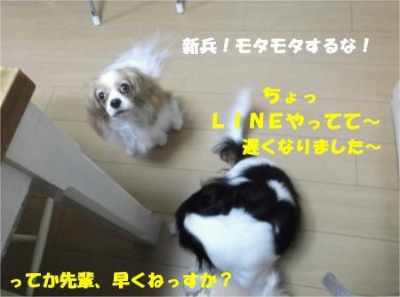 03_convert_20131011175925.jpg