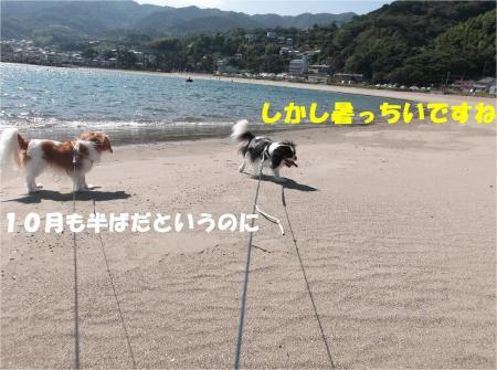 03_convert_20131012162047.jpg