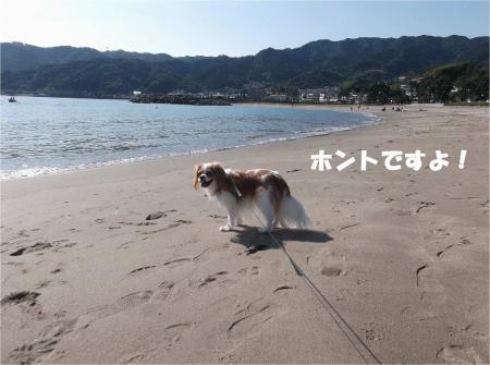 03_convert_20131015170750.jpg