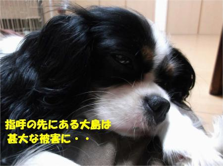 03_convert_20131016165013.jpg