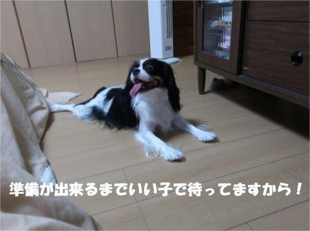 03_convert_20131026170849.jpg