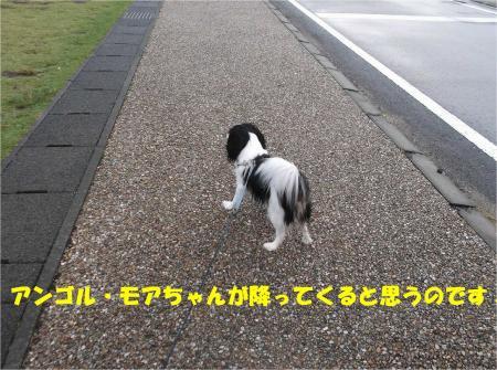 03_convert_20131028174214.jpg